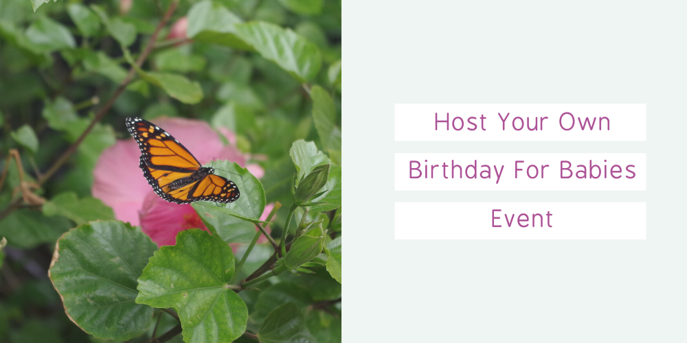 Host Your Own Birthday For Babies